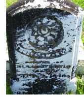 TAYLOR, HELEN AMANDA - Adams County, Ohio | HELEN AMANDA TAYLOR - Ohio Gravestone Photos