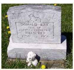 THATCHER, DONALD RAY - Adams County, Ohio | DONALD RAY THATCHER - Ohio Gravestone Photos