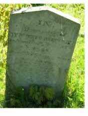 THOMPSON, WILLIAM - Adams County, Ohio | WILLIAM THOMPSON - Ohio Gravestone Photos
