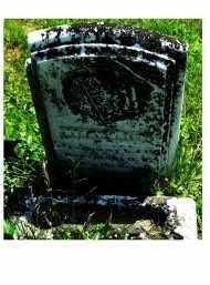 WAITE, HENRY - Adams County, Ohio | HENRY WAITE - Ohio Gravestone Photos