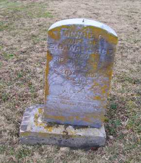 WALLACE, MINNIE C. - Adams County, Ohio | MINNIE C. WALLACE - Ohio Gravestone Photos