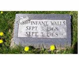 WALLS, INFANT - Adams County, Ohio | INFANT WALLS - Ohio Gravestone Photos