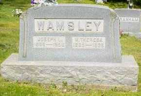 WAMSLEY, M. THERESA - Adams County, Ohio | M. THERESA WAMSLEY - Ohio Gravestone Photos