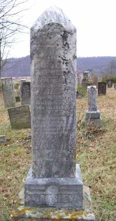 WAMSLEY, MOSES - Adams County, Ohio   MOSES WAMSLEY - Ohio Gravestone Photos