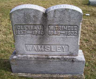 WAMSLEY, W. TRIMBLE - Adams County, Ohio | W. TRIMBLE WAMSLEY - Ohio Gravestone Photos