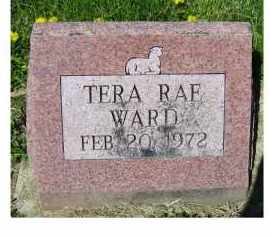 WARD, TERA RAE - Adams County, Ohio | TERA RAE WARD - Ohio Gravestone Photos