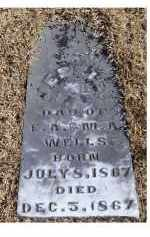 WELLS, JESSIE - Adams County, Ohio | JESSIE WELLS - Ohio Gravestone Photos