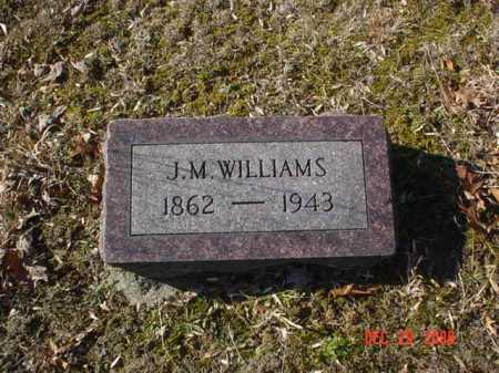 WILLIAMS, J. M. - Adams County, Ohio | J. M. WILLIAMS - Ohio Gravestone Photos