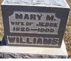 WILLIAMS, MARY M. - Adams County, Ohio | MARY M. WILLIAMS - Ohio Gravestone Photos