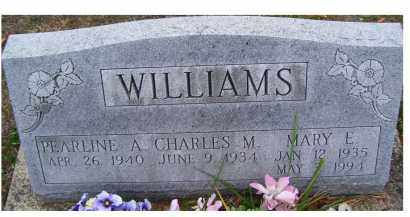 WILLIAMS, CHARLES M. - Adams County, Ohio | CHARLES M. WILLIAMS - Ohio Gravestone Photos