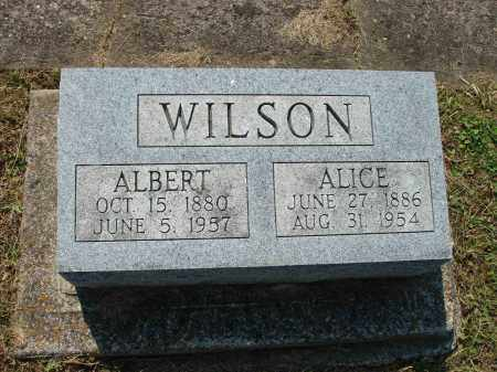 WILSON, ALICE - Adams County, Ohio | ALICE WILSON - Ohio Gravestone Photos