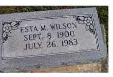 WILSON, ESTA M. - Adams County, Ohio | ESTA M. WILSON - Ohio Gravestone Photos