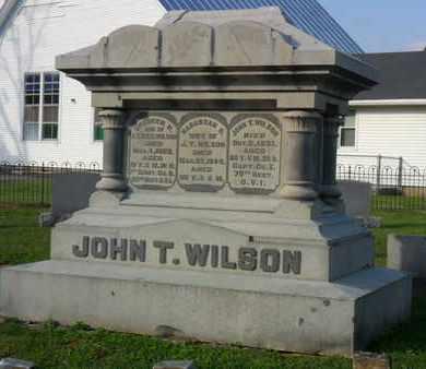 WILSON, JOHN T. - Adams County, Ohio | JOHN T. WILSON - Ohio Gravestone Photos