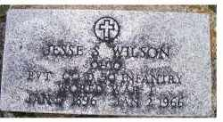 WILSON, JESSE S. - Adams County, Ohio | JESSE S. WILSON - Ohio Gravestone Photos