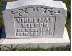 WILSON, VICKI MAE - Adams County, Ohio | VICKI MAE WILSON - Ohio Gravestone Photos