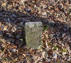 WOODS, HELEN - Adams County, Ohio | HELEN WOODS - Ohio Gravestone Photos