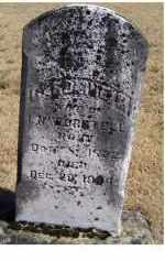 WORSTELL, CAROLINE M. - Adams County, Ohio | CAROLINE M. WORSTELL - Ohio Gravestone Photos