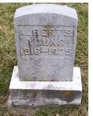 YOUNG, ALBERT S. - Adams County, Ohio | ALBERT S. YOUNG - Ohio Gravestone Photos