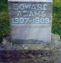 ADAMS, EDWARD - Allen County, Ohio | EDWARD ADAMS - Ohio Gravestone Photos