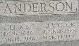 ANDERSON, LILLIE B. - Allen County, Ohio | LILLIE B. ANDERSON - Ohio Gravestone Photos