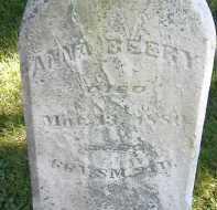 BEERY, ANNA - Allen County, Ohio | ANNA BEERY - Ohio Gravestone Photos