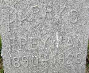 FREYMAN, HARRY G. - Allen County, Ohio | HARRY G. FREYMAN - Ohio Gravestone Photos