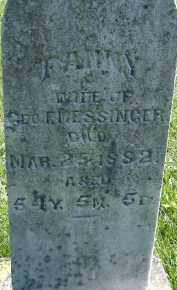 MESSINGER, FANNY - Allen County, Ohio | FANNY MESSINGER - Ohio Gravestone Photos