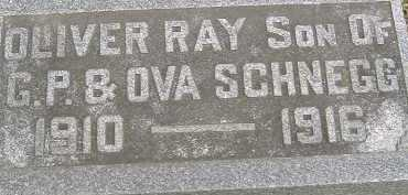SCHNEGG, OLIVER RAY - Allen County, Ohio | OLIVER RAY SCHNEGG - Ohio Gravestone Photos