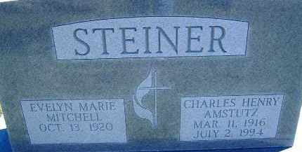 MITCHELL STEINER, EVELYN - Allen County, Ohio | EVELYN MITCHELL STEINER - Ohio Gravestone Photos