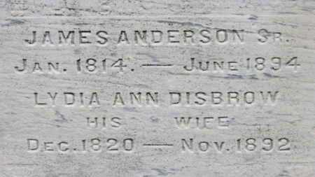 DISBROW ANDERSON, LYDIA ANN - Ashland County, Ohio | LYDIA ANN DISBROW ANDERSON - Ohio Gravestone Photos