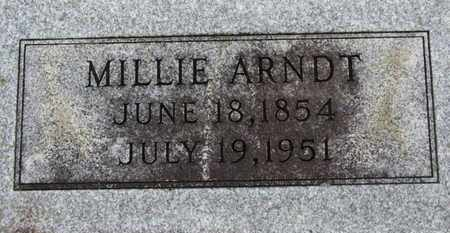 ARNDT, MILLIE - Ashland County, Ohio | MILLIE ARNDT - Ohio Gravestone Photos