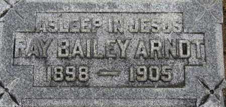 ARNDT, RAY BAILEY - Ashland County, Ohio | RAY BAILEY ARNDT - Ohio Gravestone Photos