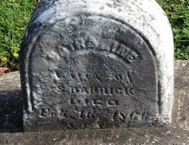 BARRICK, S. - Ashland County, Ohio | S. BARRICK - Ohio Gravestone Photos