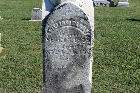 BERRY, WILLIAM - Ashland County, Ohio | WILLIAM BERRY - Ohio Gravestone Photos