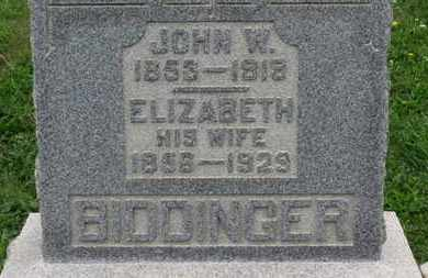 BIDDINGER, ELIZABETH - Ashland County, Ohio | ELIZABETH BIDDINGER - Ohio Gravestone Photos