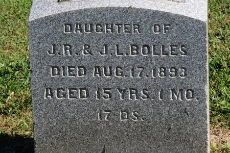 BOLLES, EVA L. - Ashland County, Ohio | EVA L. BOLLES - Ohio Gravestone Photos