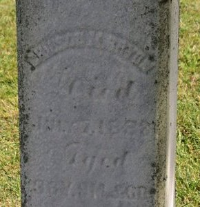 BRYAN, S.A. - Ashland County, Ohio   S.A. BRYAN - Ohio Gravestone Photos