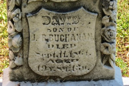 BUCHANAN, DAVID - Ashland County, Ohio | DAVID BUCHANAN - Ohio Gravestone Photos