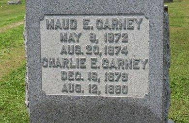 CARNEY, CHARLIE E. - Ashland County, Ohio | CHARLIE E. CARNEY - Ohio Gravestone Photos