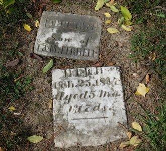 FERRELL, THOMAS - Ashland County, Ohio | THOMAS FERRELL - Ohio Gravestone Photos