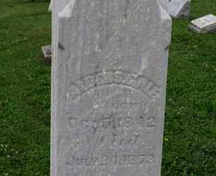 GALE, ALDEN S. - Ashland County, Ohio | ALDEN S. GALE - Ohio Gravestone Photos