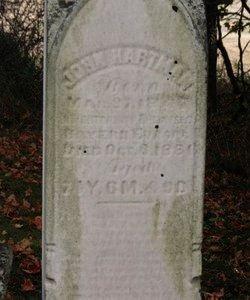 HARTMAN, JOHN - Ashland County, Ohio | JOHN HARTMAN - Ohio Gravestone Photos