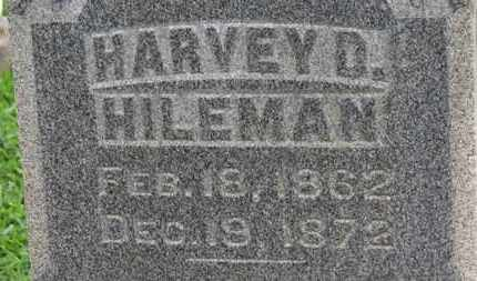 HILMAN, HARVEY D. - Ashland County, Ohio | HARVEY D. HILMAN - Ohio Gravestone Photos