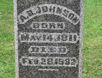 JOHNSON, A.B. - Ashland County, Ohio | A.B. JOHNSON - Ohio Gravestone Photos