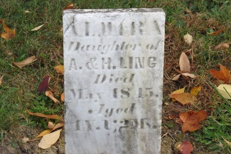 LING, ALMIRA - Ashland County, Ohio | ALMIRA LING - Ohio Gravestone Photos