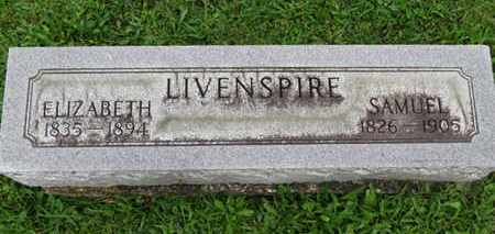 LIVENSPIRE, SAMUEL - Ashland County, Ohio | SAMUEL LIVENSPIRE - Ohio Gravestone Photos