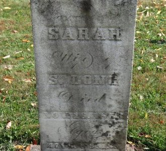 LONG, SARAH - Ashland County, Ohio | SARAH LONG - Ohio Gravestone Photos