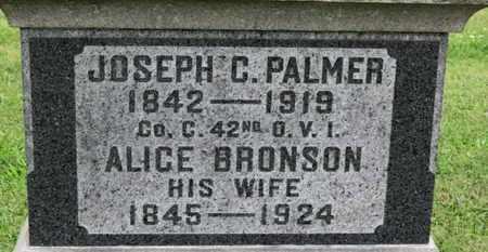 PALMER, JOSEPH C. - Ashland County, Ohio | JOSEPH C. PALMER - Ohio Gravestone Photos