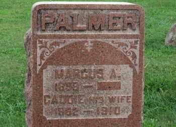 PALMER, CADDIE - Ashland County, Ohio | CADDIE PALMER - Ohio Gravestone Photos
