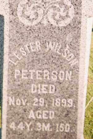 PETERSON, LESTER WILSON - Ashland County, Ohio | LESTER WILSON PETERSON - Ohio Gravestone Photos